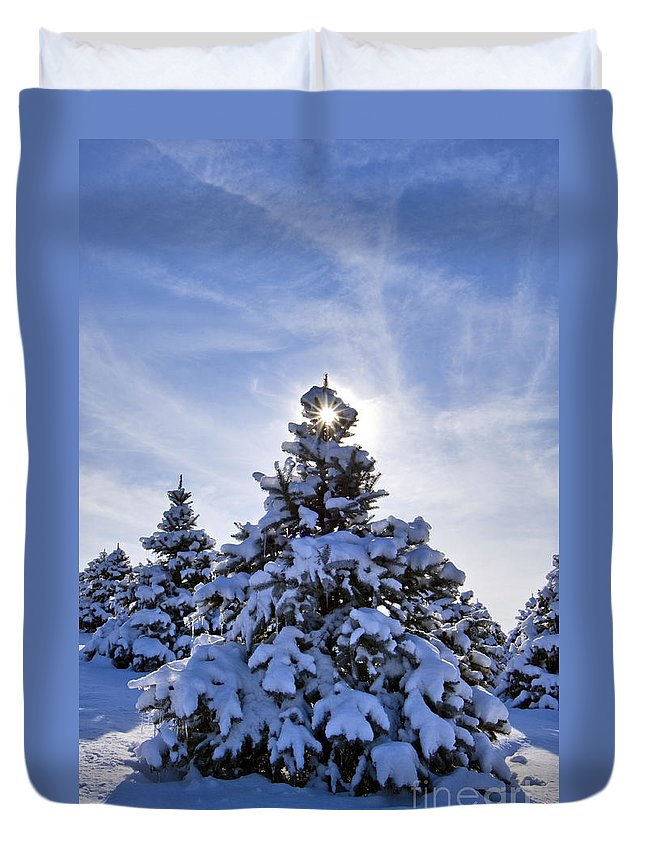 Spruce Duvet Cover featuring the photograph Winter Starburst - D008347 by Daniel Dempster