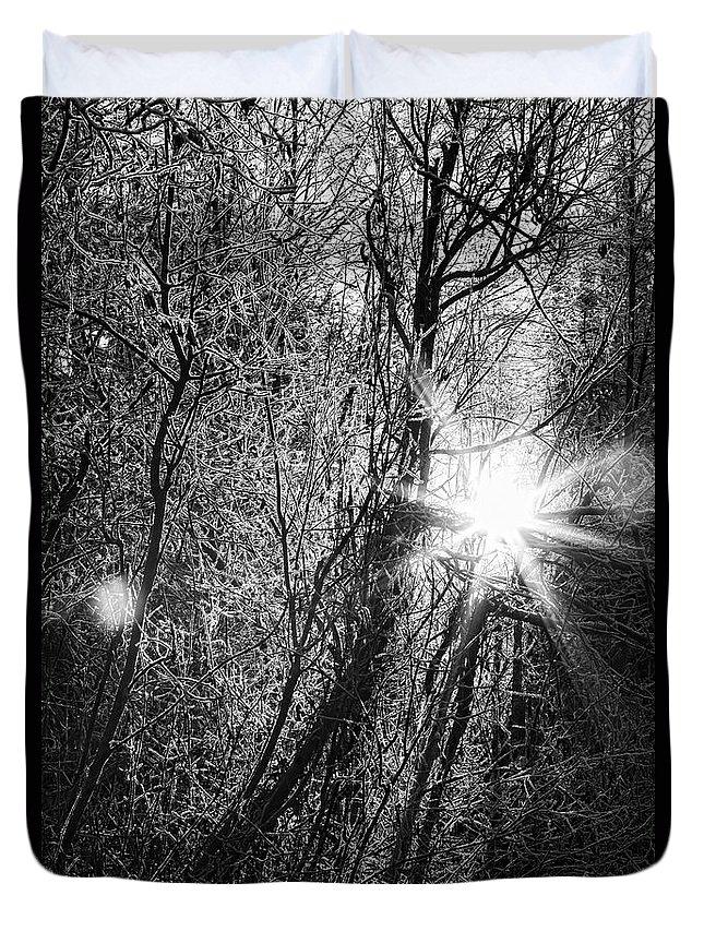 Alaska Duvet Cover featuring the photograph Winter Sunburst by Michele Cornelius