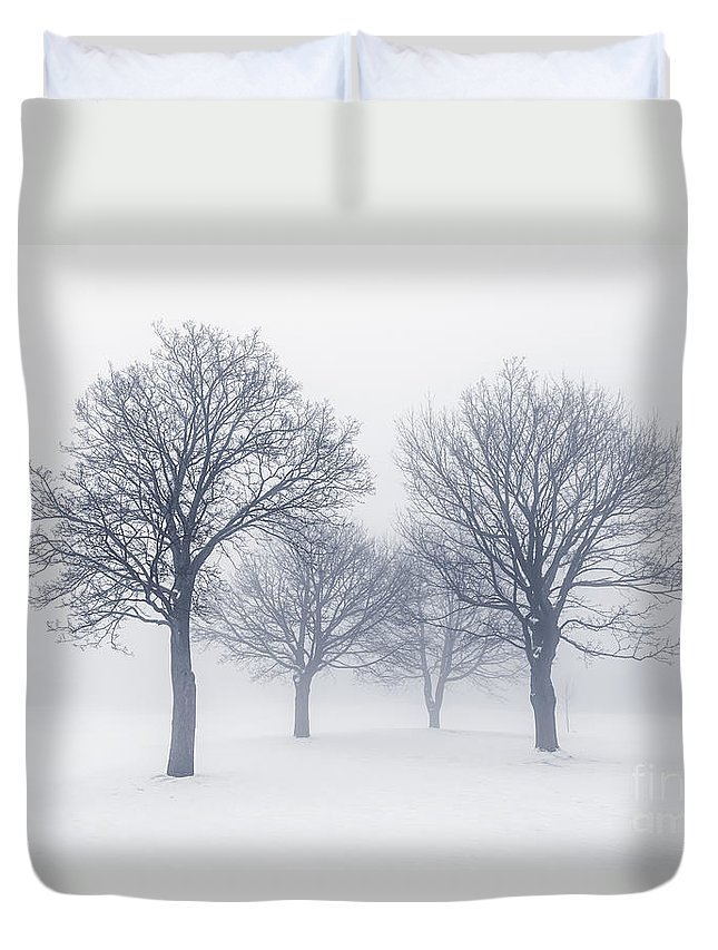 Trees Duvet Cover featuring the photograph Winter Trees In Fog by Elena Elisseeva