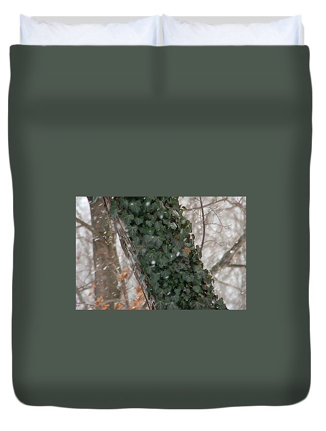 Vine Duvet Cover featuring the photograph Winter Vine by Aimee L Maher ALM GALLERY