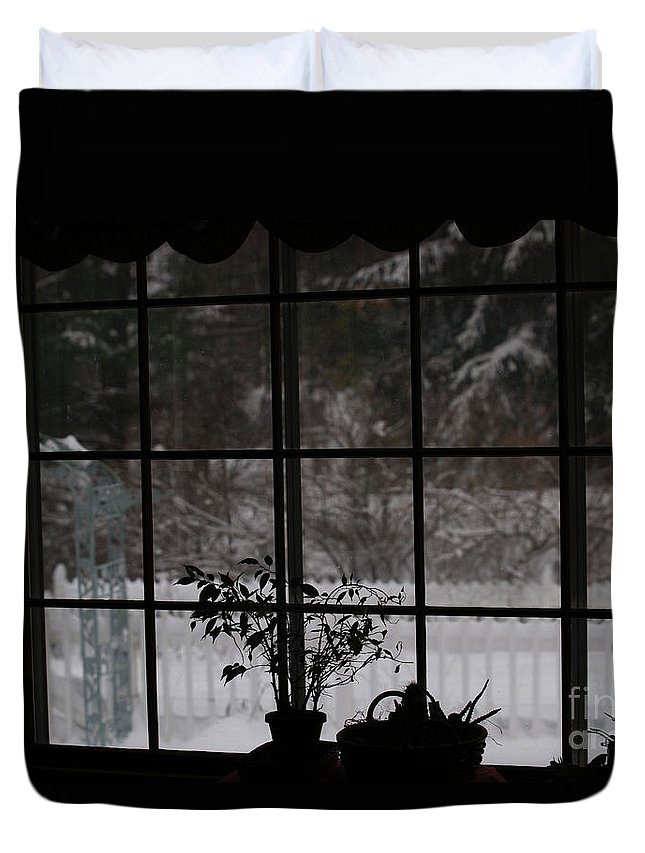 Reflection Duvet Cover featuring the photograph Winters Reflection by Linda Shafer
