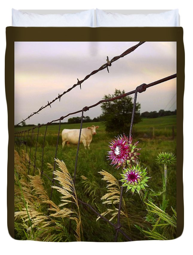 Cow Duvet Cover featuring the photograph Wisconsin Evening by Viviana Nadowski