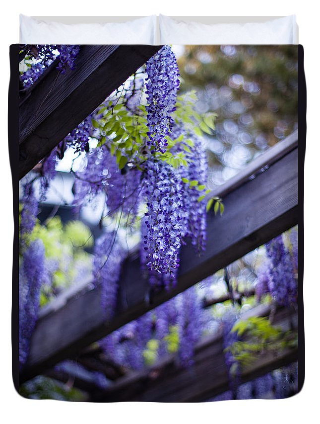 Wisteria Duvet Cover featuring the photograph Wisteria Beams by Mike Reid
