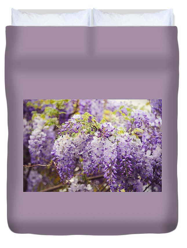 Wisteria Duvet Cover featuring the photograph Wisteria Garden 2 by Jenny Rainbow