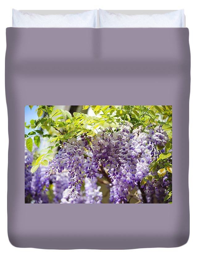 Wisteria Duvet Cover featuring the photograph Wisteria Garden 9 by Jenny Rainbow