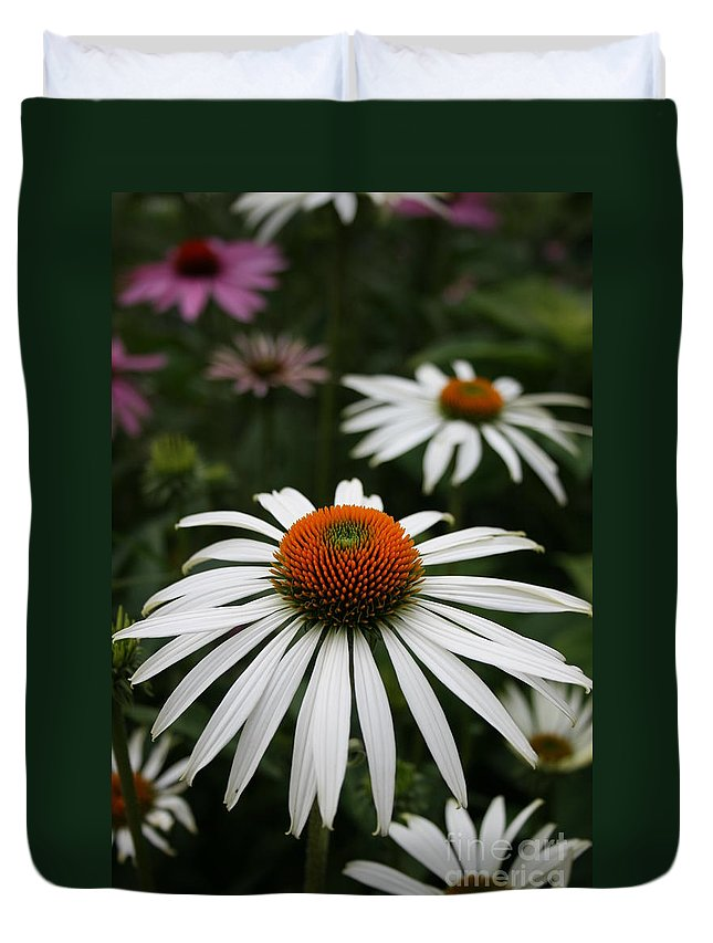 Flowers Duvet Cover featuring the photograph Wonderful White Cone Flower by Kathy DesJardins