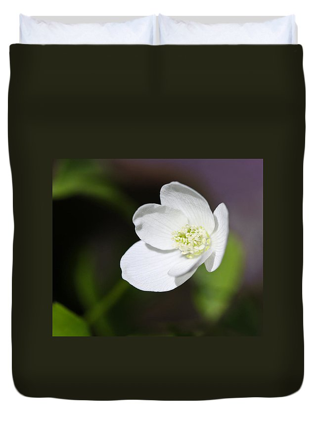 Windflower Duvet Cover featuring the photograph Wood Anemone by Melinda Fawver