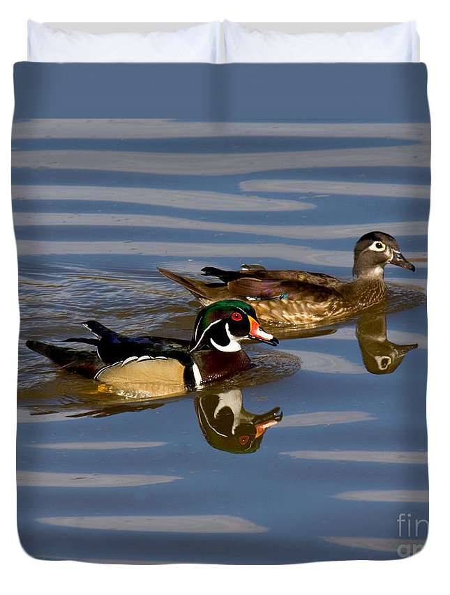 Fauna Duvet Cover featuring the photograph Wood Ducks by Anthony Mercieca
