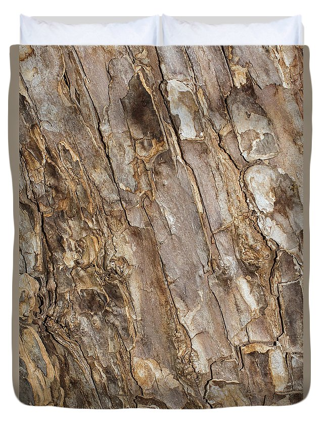 Texas Duvet Cover featuring the photograph Wood Textures 4 by Ashley M Conger