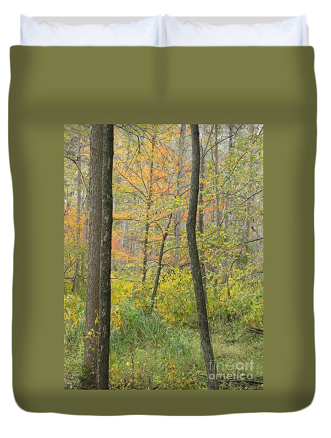 Autumn Duvet Cover featuring the photograph Woodland Interior by Ann Horn