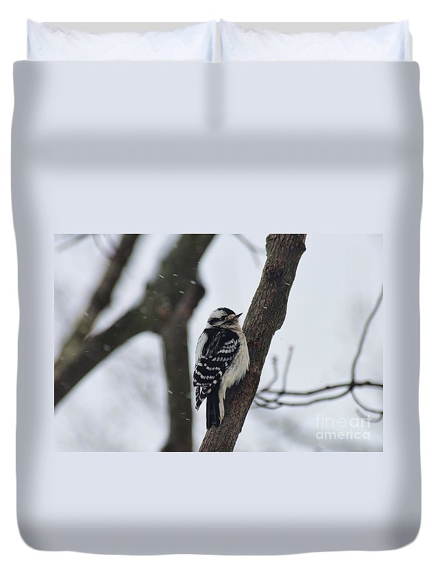 Woodpecker Duvet Cover featuring the photograph Woodpecker In Winter by David Arment