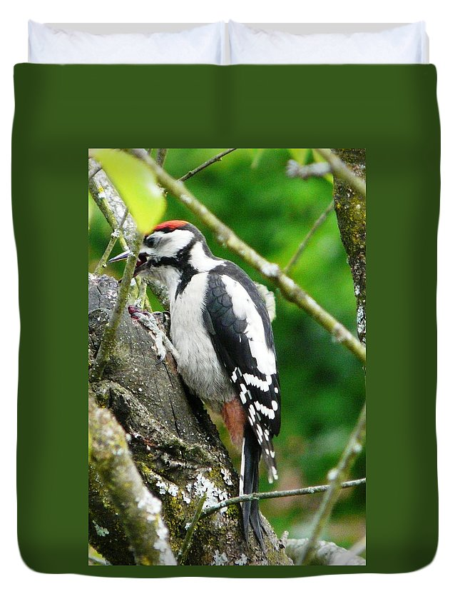 Bird Duvet Cover featuring the photograph Woodpecker Swallowing A Cherry by Valerie Ornstein