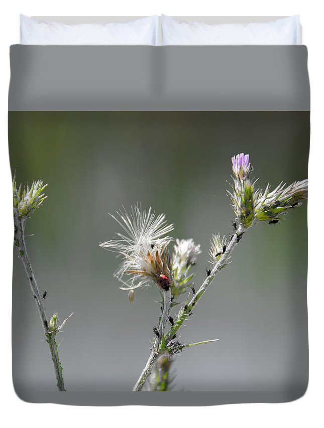 Greece Prints Duvet Cover featuring the photograph Woohoo Attack by Sotiris Filippou