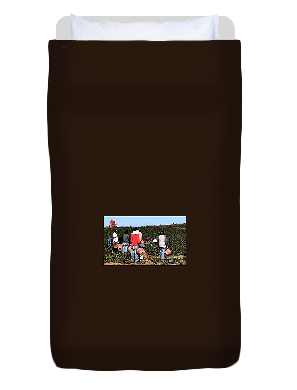 Migrant Workers Duvet Cover featuring the photograph Working The Fields by Lydia Holly