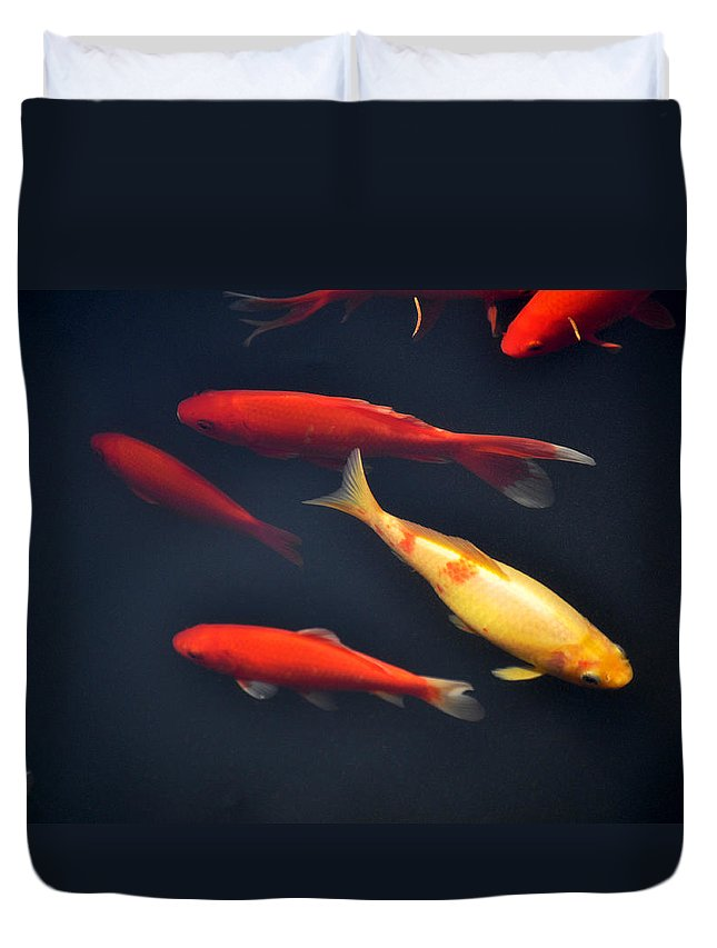 Horizontal Duvet Cover featuring the photograph Yellow And Orange Koi Swimming by Sally Rockefeller