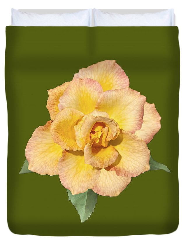 Rose Duvet Cover featuring the photograph Yellow And Pink Rose by Delores Knowles