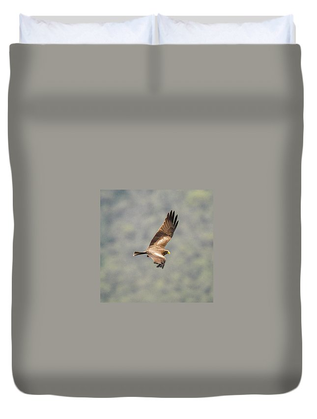 Africa Duvet Cover featuring the photograph Yellow Billed Kite 8 by Alistair Lyne