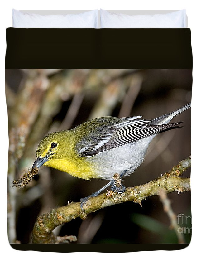 Vireo Duvet Cover featuring the photograph Yellow-breasted Vireo by Anthony Mercieca