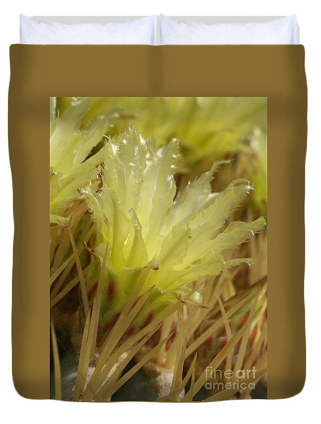 Nature Duvet Cover featuring the photograph Cactus Blossom 2 by Rudi Prott