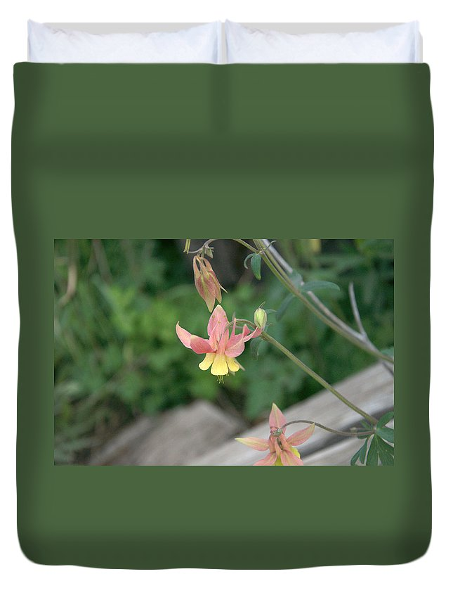 Yellow Duvet Cover featuring the photograph Yellow Columbine 2 by Frank Madia