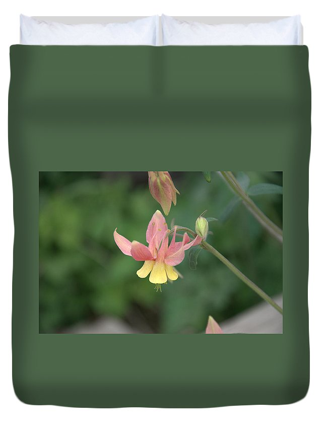 Flower Duvet Cover featuring the photograph Yellow Columbine by Frank Madia