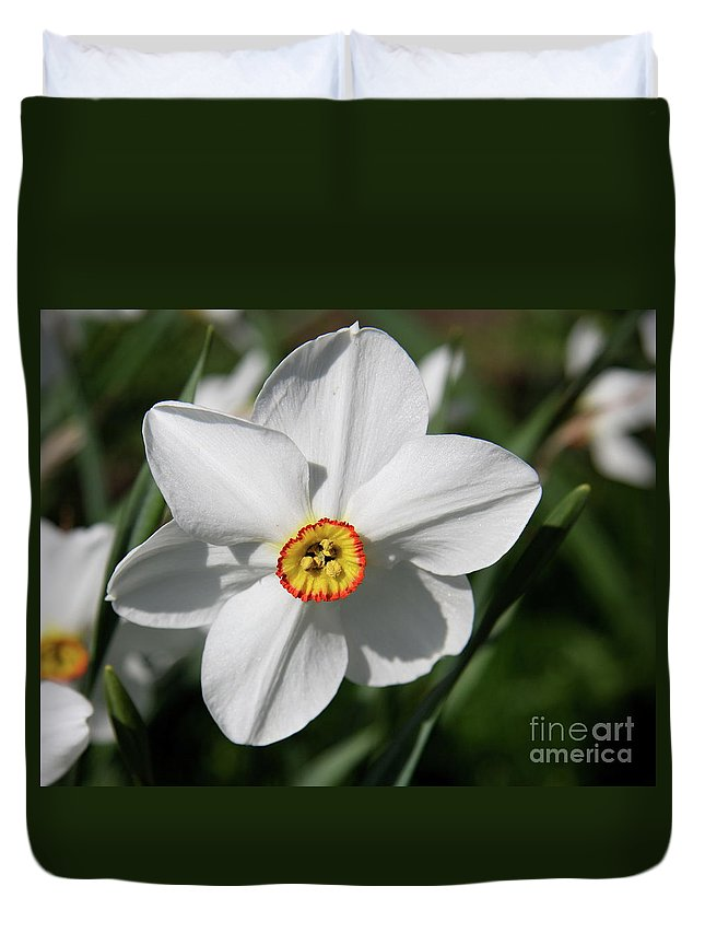 Daffodil Duvet Cover featuring the photograph Yellow Daffodil Heart by Christiane Schulze Art And Photography