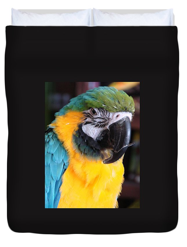 Parrots Duvet Cover featuring the photograph Yellow Fellow by Mary Halpin