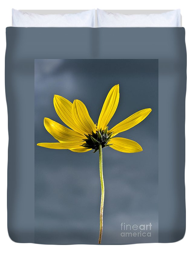 Bright Duvet Cover featuring the photograph Yellow Flower Against A Stormy Sky by Paul Adams