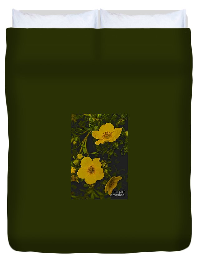 Yellow Duvet Cover featuring the photograph Yellow Flower by William Norton