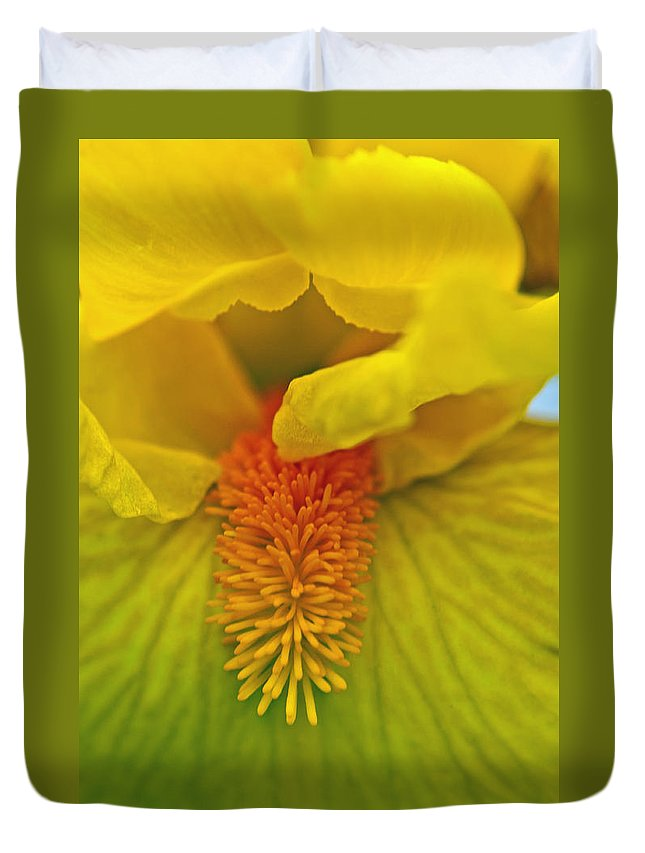 Iris Duvet Cover featuring the photograph Yellow Iris Beard by Tikvah's Hope
