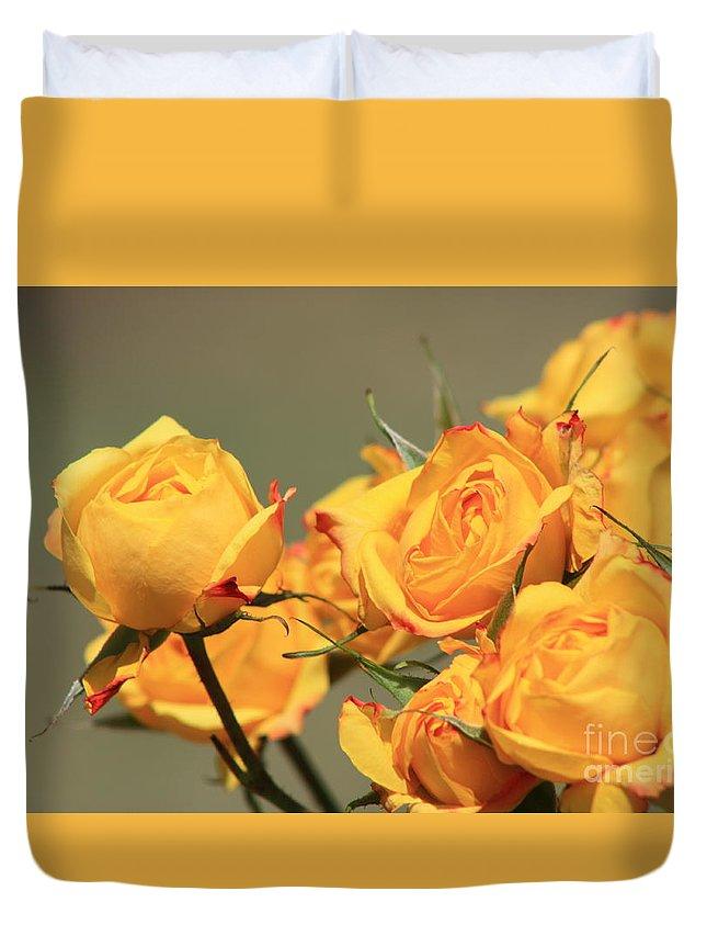 Rose Duvet Cover featuring the photograph Yellow Mini Rose's Closeup by Robert D Brozek
