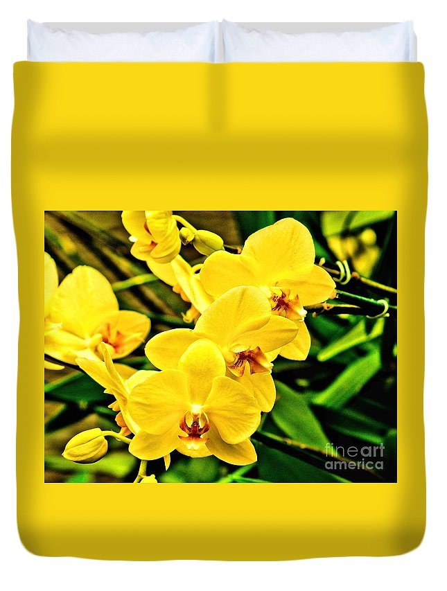 Yellow Duvet Cover featuring the photograph Yellow Orchids by Nick Zelinsky