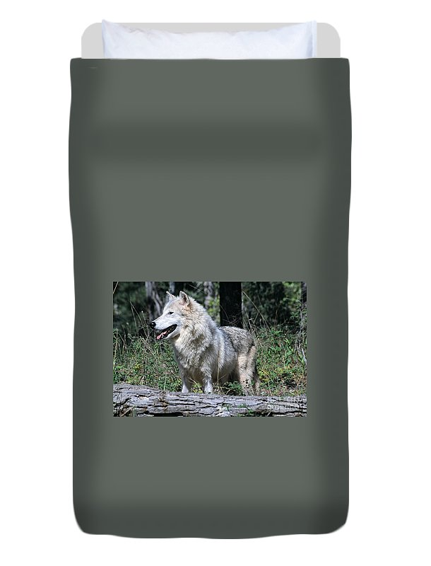 Timber Duvet Cover featuring the photograph Young Wolf by Les Palenik