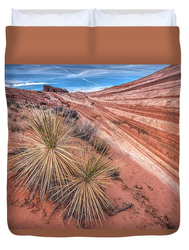 Canyon Duvet Cover featuring the photograph Yucca Valley by Peter Tellone