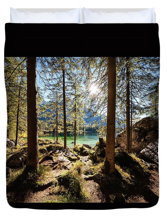 Tranquility Duvet Cover featuring the photograph Zauberwald In Autumn by Jorg Greuel