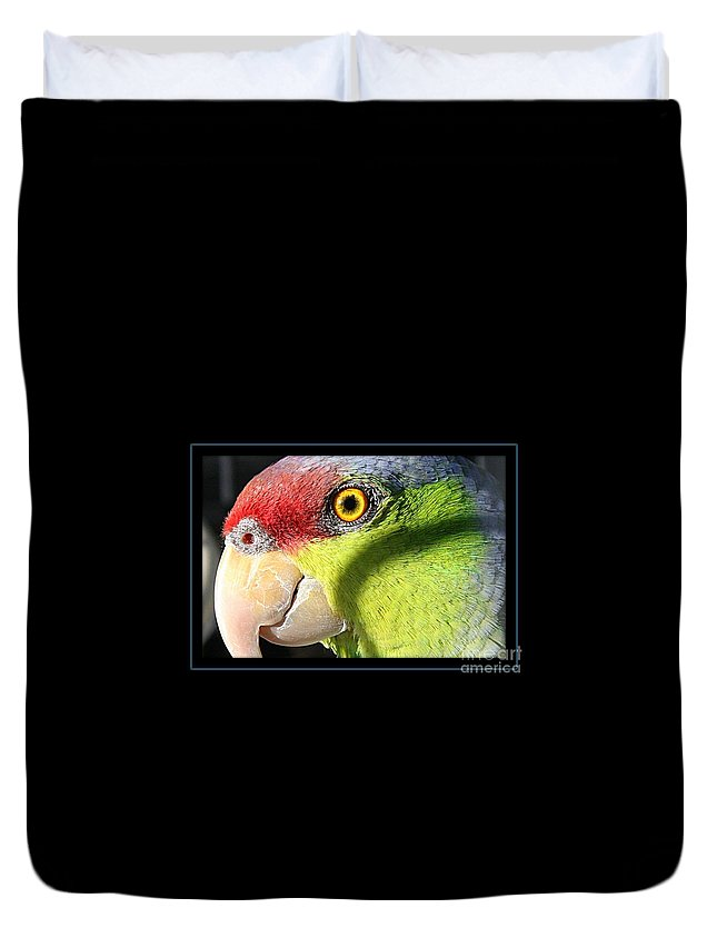 Tropical Bird Duvet Cover featuring the photograph Zeb by Brenda McGee-Paap