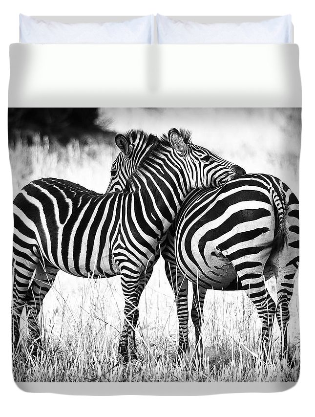3scape Duvet Cover featuring the photograph Zebra Love by Adam Romanowicz