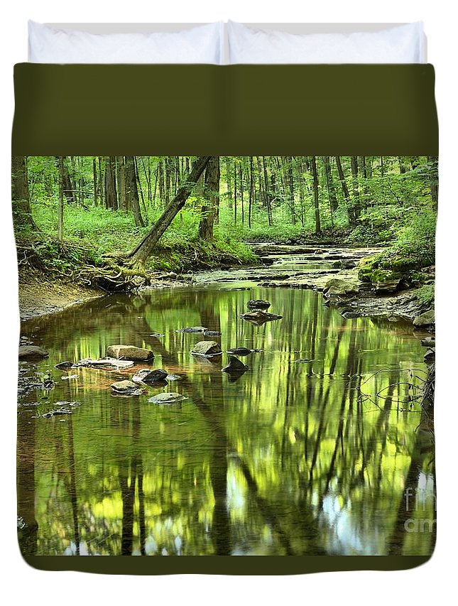 Hells Hollow Duvet Cover featuring the photograph Zen In The Forest by Adam Jewell