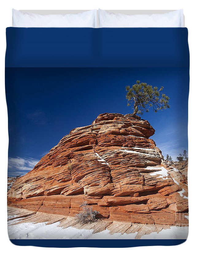 Zion Duvet Cover featuring the photograph Zion National Park Utah by Jason O Watson