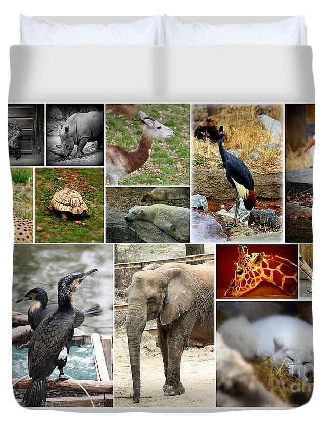 Zoo Collage Duvet Cover featuring the photograph Zoo Collage by Patti Whitten