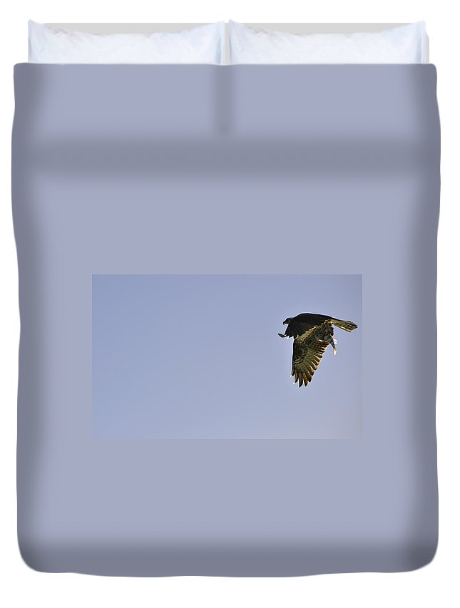 Osprey Duvet Cover featuring the photograph Osprey Lunch To Go III by Christine Stonebridge