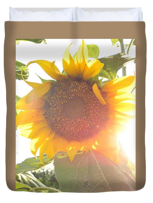 Sun Duvet Cover featuring the photograph Sun Flower by Nada Meeks