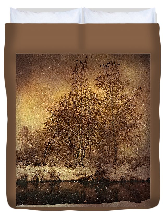 Winter Duvet Cover featuring the photograph Winter by Mitko Peroski