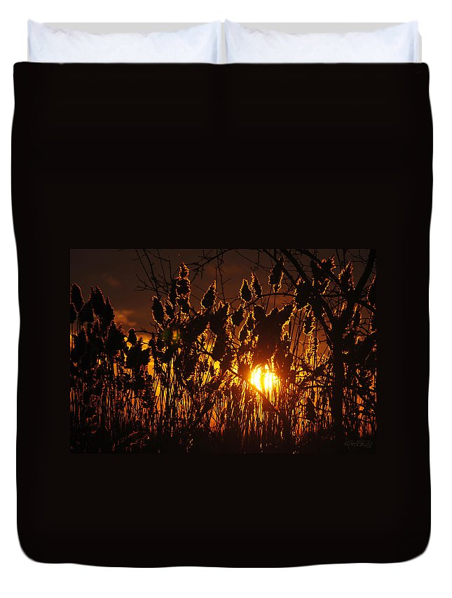 Duvet Cover featuring the photograph 05 Sunset by Michael Frank Jr