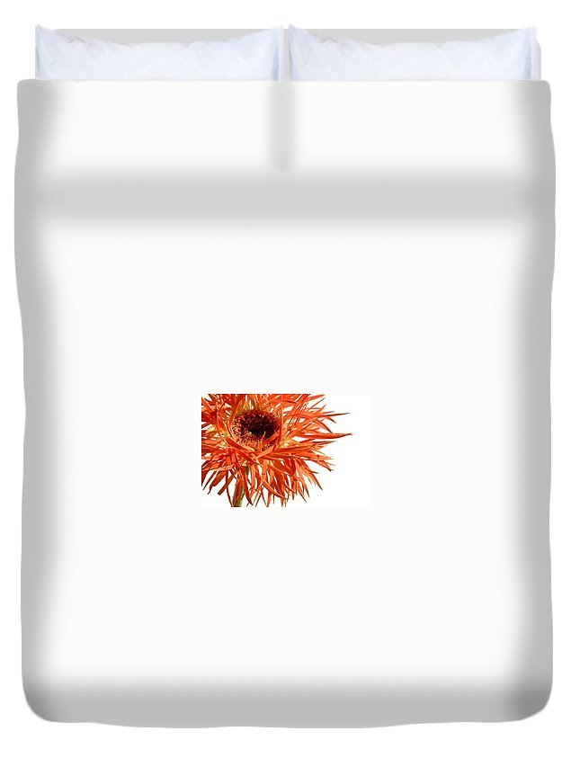 Gerbera Photographs Duvet Cover featuring the photograph 0687c-018 by Kimberlie Gerner