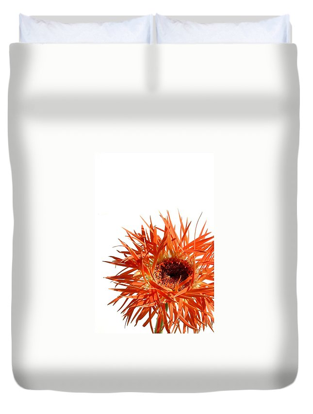 Gerbera Photographs Duvet Cover featuring the photograph 0687c-020 by Kimberlie Gerner