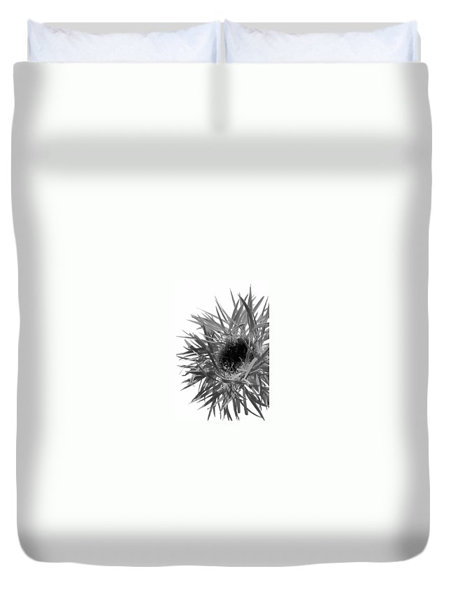 Gerbera Photographs Duvet Cover featuring the photograph 0688c-016 by Kimberlie Gerner