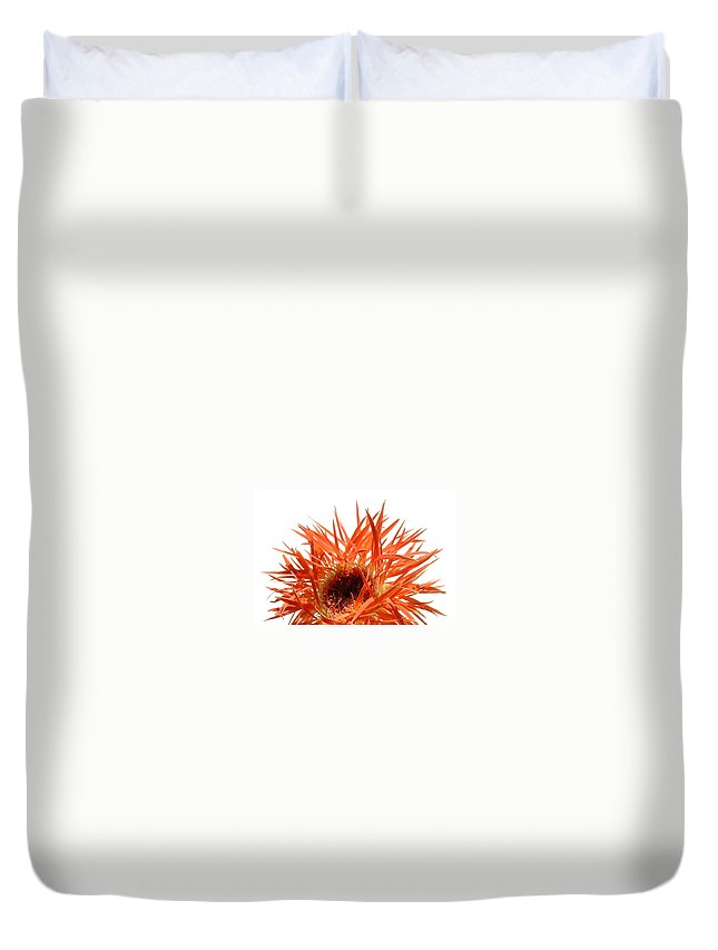 Gerbera Photographs Duvet Cover featuring the photograph 0688c-020 by Kimberlie Gerner