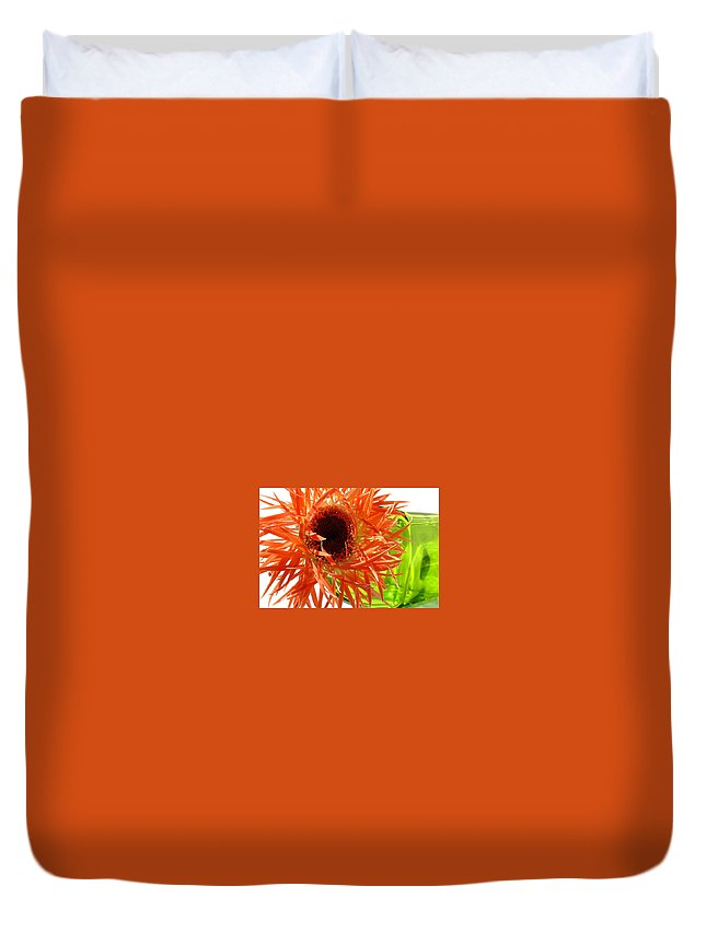 Gerbera Photographs Duvet Cover featuring the photograph 0690c-013 by Kimberlie Gerner