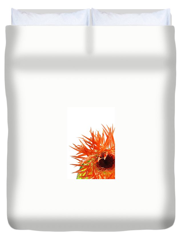 Gerbera Photographs Duvet Cover featuring the photograph 0690c-025 by Kimberlie Gerner